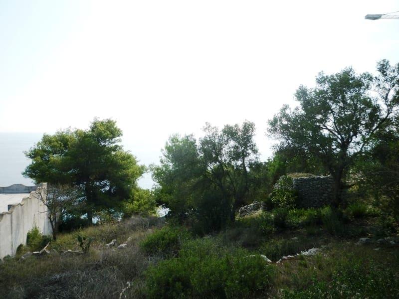 Casasi Immobiliare P1070363